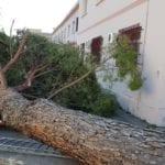 Formia, dopo il maltempo al via le verifiche: chiusi i cimiteri e il parco 'De Curtis'