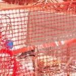 Disinnesco bomba a Formia, Confcommercio plaude alla scelta della data