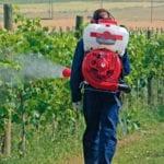 450 litri di prodotti fitosanitari irregolari: sequestro e multa per un'azienda di Aprilia