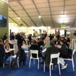 """""""Olivicoltore e Assaggiatore olio di oliva vergine ed extravergine"""": il nuovo corso gratuito"""