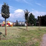 Piantati nuovi lecci nel Parco Giovanni Paolo II
