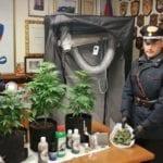 Coltiva marijuana in casa: a Fondi arrestata una donna