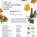 L'arancia bionda di Fondi diventa una birra, martedì la presentazione