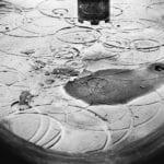 Il gruppo 'Arte libera' di Priverno ospita la fotografa genovese Francesca Donadini