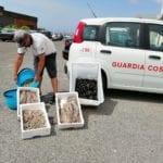 Controlli della Capitaneria di Porto sulle spiagge di Formia: fioccano multe e verbali