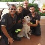 Cane bloccato su uno scoglio, il salvataggio dei vigili del fuoco – FOTO