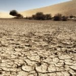I Consorzi di Bonifica argine contro l'avanzare della desertificazione