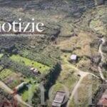 """Forno crematorio, anche da Formia sostegno alla petizione """"contro chi vuole privatizzare anche la morte"""""""