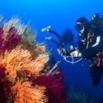 Al via la campagna della Guardia Costiera per il monitoraggio del mare – VIDEO