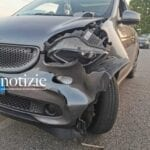 Incidente tra auto e cane-pastore: dramma sfiorato sull'Appia