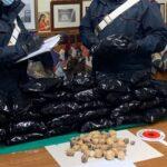Bulbi di papavero da oppio, agricoltore di Fondi arrestato