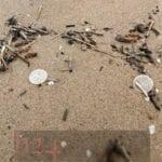 Spiagge invase dai filtri del depuratore campano, il Comune vuole i danni