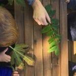 Regione Lazio: 3 milioni per attività di outdoor education