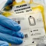 Curare i malati Covid col plasma anche all'ospedale di Formia: la proposta del sindaco di Gaeta