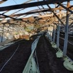 Maltempo, inizia la conta dei danni: ingenti quelli agricoltura #FOTO