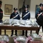 Terracina, i carabinieri arrestano pusher 36enne: sorpreso con oltre 30 kg. di stupefacenti