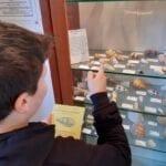 Nuova gestione per il Museo del Mare e della Costa