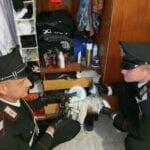 Droga e armi clandestine in casa, scarcerato uno dei due albanesi arrestati