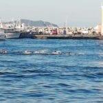 """Isola sempre più fuori controllo, tuffi nel porto dei """"pariolini"""""""