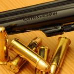 Aprilia, gli agenti di Polizia sospendono la licenza di vendita a due armerie