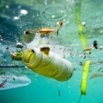 'A pesca di plastica', Formiaè lancia la petizione sul recupero dei rifiuti in mare