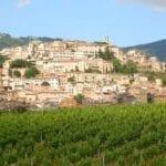Cori, nasce il Consorzio volontario per la tutela e la valorizzazione dei vini D.O.C.