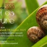 Povertà nel sud del Lazio, la Caritas presenta il Report 2020