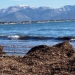 Tutela della costa e lotta all'erosione, Sperlonga studia le soluzioni green